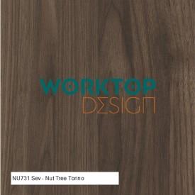 NU731-Sev-Nut-Tree-Torino